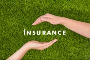 Picture of two hand Protect Insurance word with grass background Self Insureds