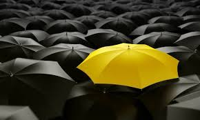 Graphic Of Black And One Yellow Umbrella Reinsurance Concept