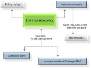 Flow Chart Of Coinsurer Life Insurance Policy