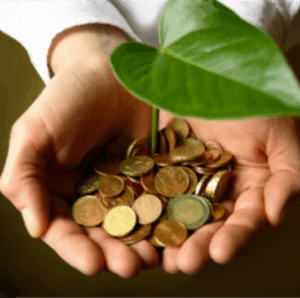 Picture Of Hand Carrying ALAE Plant With Coins