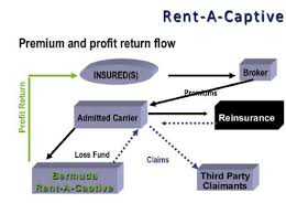 Premium and Profit Return Flow Rent-A-Captives Workers Comp