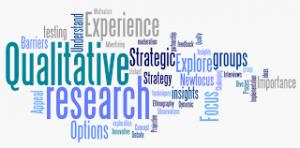 Graphic of words qualitative Claim Auditing