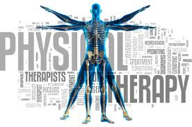 Computer Graphic of Physical Therapy Human Body