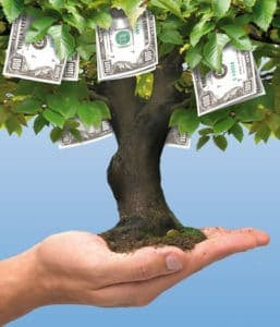 Graphic of Dollars Money Tree Growing on Human Hand Payout Profile Return on Investment