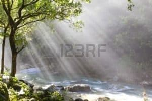 Picture of Forest River Inspiring Story ABS News