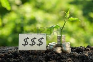 Graphic Picture Of Coins On Soil With certificates of insurance Plant earn Concept