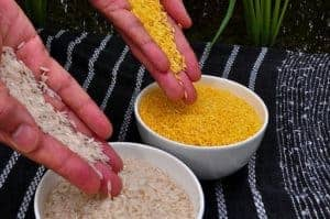 Picture Of Hand Put Free Rice On The Bowl