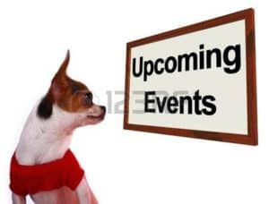 Picture of Dog Upcoming Meeting WCIRB