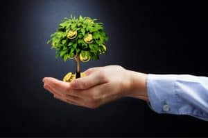 Hand Showing Money Workers Comp Premium Auditor Fraud On Small Tree