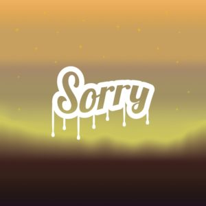 Text Graphic Of Sorry Apologies In Nighty Background