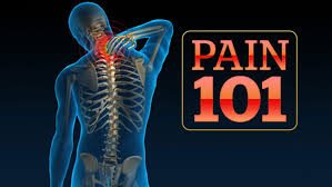 Graphic of Chronic Pain 101 Skeleton Body