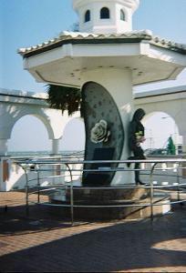 Selena NCCI System memorial