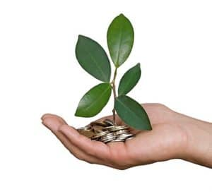 Hand Cupped Workers Comp Self Insured Plant With Coins