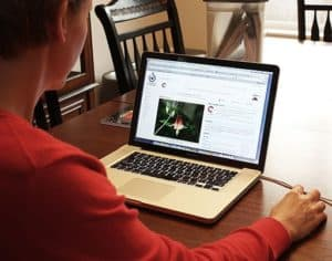 Woman Using Laptop Workers Comp Articles On Table