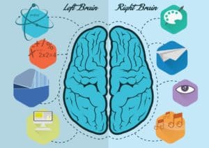 Graphic of Brain of workers comp mental health Left and Right with Icons