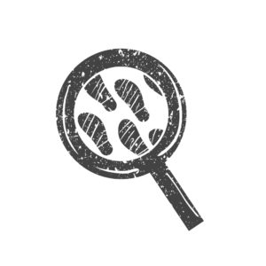 Magnifying Glass Insurance Policy With Proof Foot Print