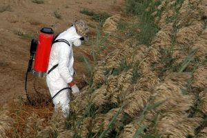 Man Doing Spray North Carolina Statewide Safety Conference Pesticide