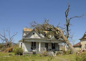 Tree Fall on North Carolina Insurance Commissioner House Damage