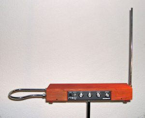 theremin picture workers comp