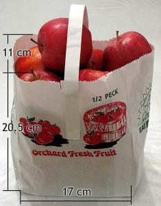 picture bag apples workers comp risk management